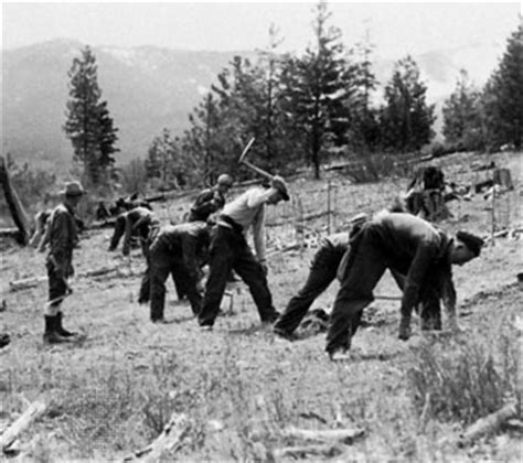 the new deal s forest army how the civilian conservation corps worked how things worked books civilian conservation corps ccc united states history