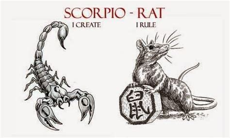 17 best ideas about traits of a scorpio on pinterest
