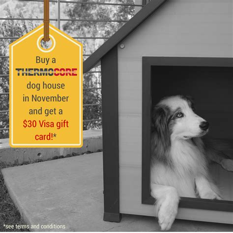30 Gift Card Visa - buy a thermocore dog house in november get a 30 visa gift card new age pet