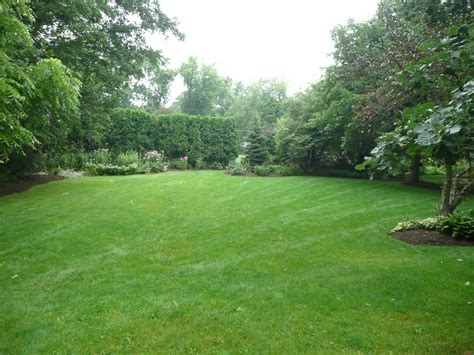 Dupage Real Estate 187 2009 187 July 187 15 Our New Home Landscaping Ideas For Big Backyards