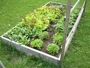transition harrisburg square foot gardening
