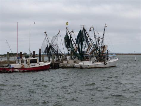 shrimp boat nc shrimp boats beaufort nc photo