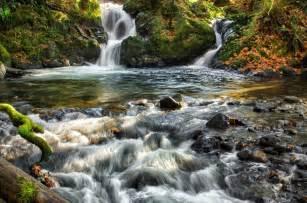 Banco de im 193 genes cascadas de agua cristalina en medio del bosque