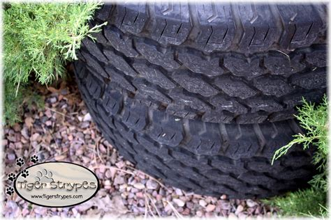 Recycled Tire Planter by How To Make A Recycled Tire Planter Diy Tigerstrypesblog