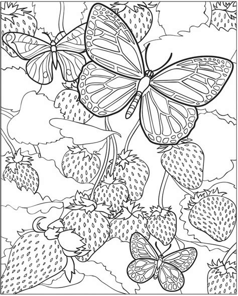 butterflies coloring book for adults books free detailed butterfly coloring pages