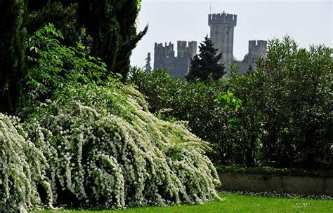 i giardini di sigurtà valeggio sul mincio parco giardino sigurt 224