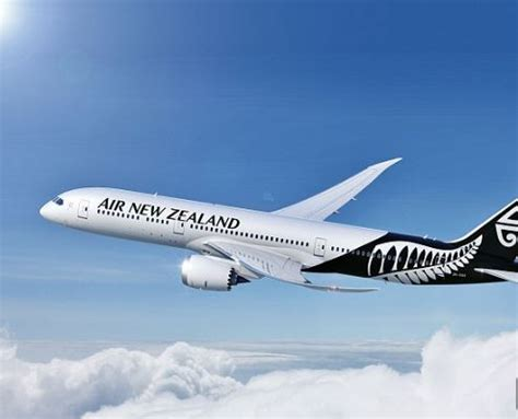 new zealand job interview free flights to new zealand for job seekers