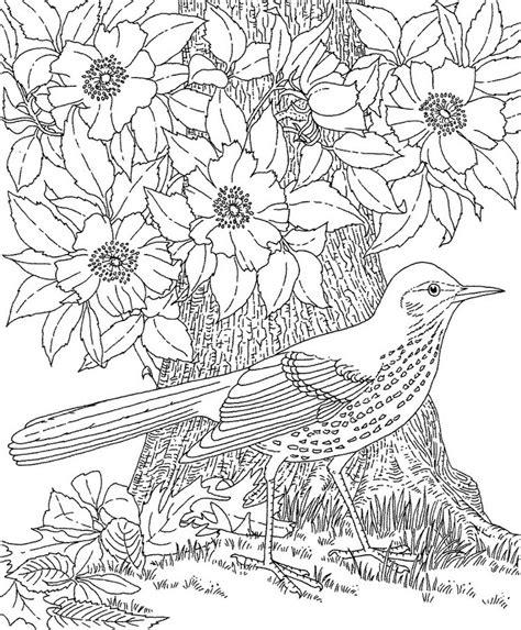 hard landscape coloring pages ausmalbilder f 252 r erwachsene zum ausdrucken 30 sch 246 ne