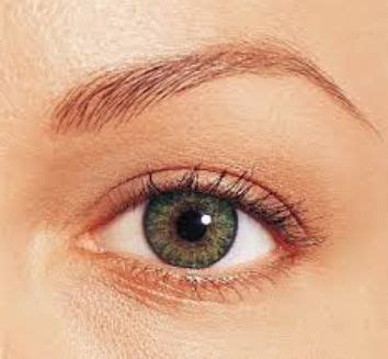fresh look color blend cosmetic contact lenses green