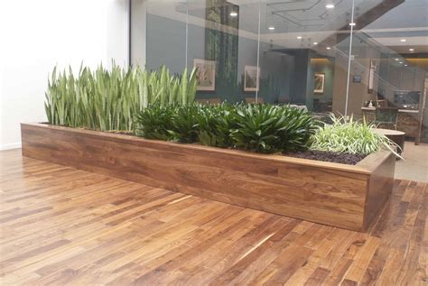 stylish and modern large scale planter box created by