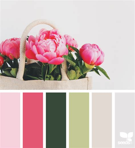 nature inspired color palettes aka design seeds for designers crafters and home decorators seeds color palettes 28 images design seeds color