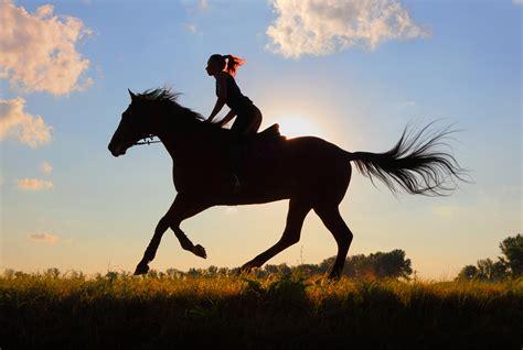 commercial girl riding horse aansprakelijkheid bij ongeval met paard hond kat of