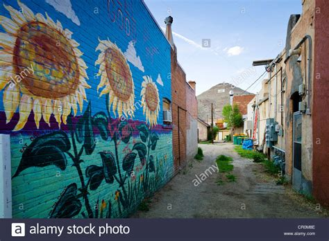 colorful wall murals colorful murals painted on the brick wall of a building in