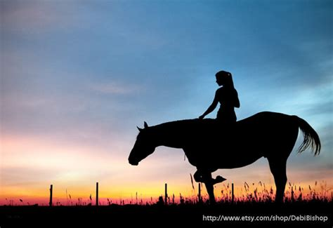 horse rider silhouette sunset sky nature farm  ranch