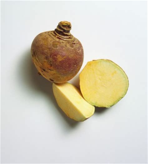 identifying root vegetables a guide to winter root vegetables popsugar food