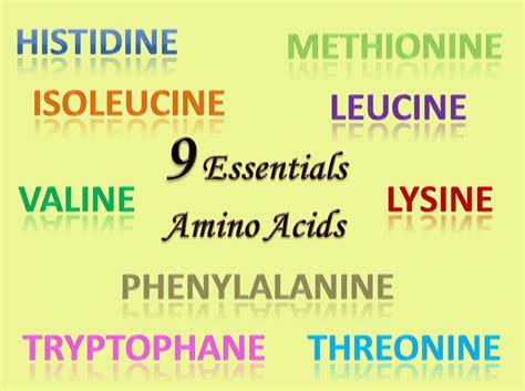 Senarai Whey Protein apakah asid amino dan kepentingannya vitamin cerdik