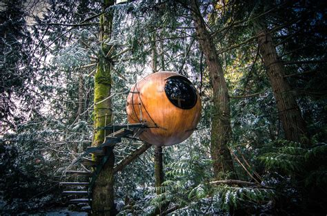 the ten top tree house 9 tree houses you can actually sleep in