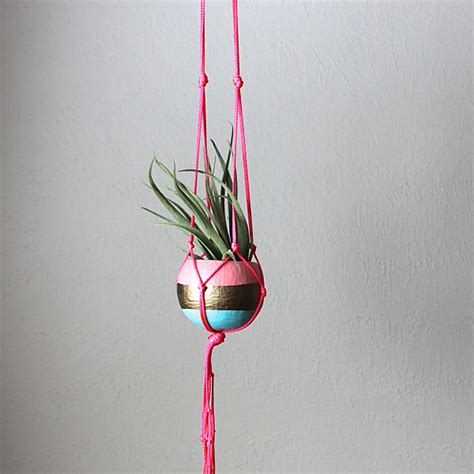 Hanging Macrame Planter - 5 unique ways to display air plants