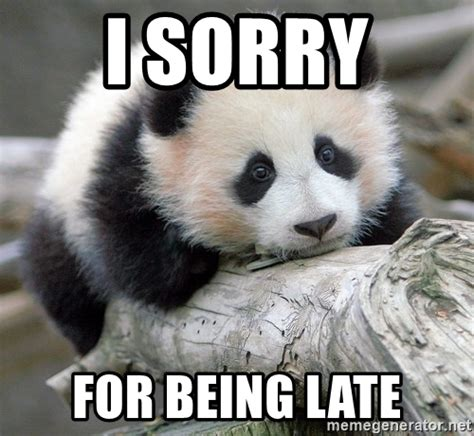 Memes About Being Sorry - i sorry for being late sad panda meme generator