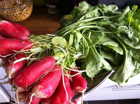 cuisiner les feuilles de radis cuisiner les fanes de radis et de betteraves