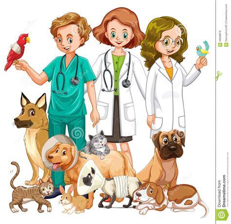 imagenes de medicas veterinarias veterinarios y muchos tipo de animales ilustraci 243 n del