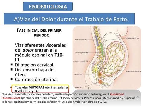 el dolor del parto 8493957755 analgesia en trabajo de parto expo 2 arreglado