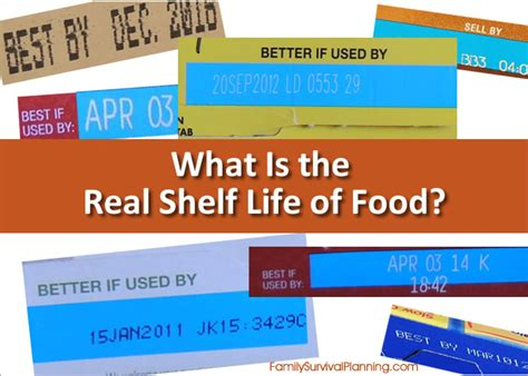 term food shelf