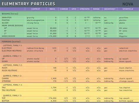 the universe elementary particles non