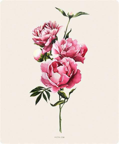 watercolor tattoo peony 25 best ideas about peony painting on