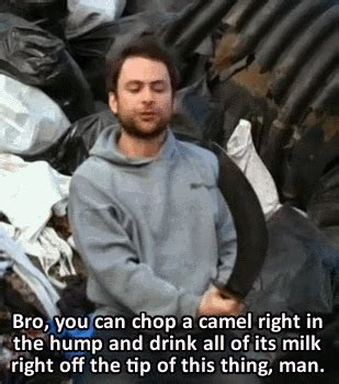 iasip charlie quotes