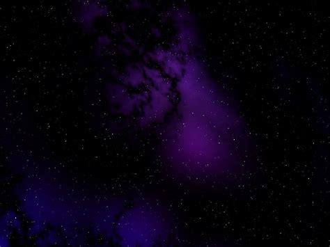 purple and black background black purple wallpapers wallpaper cave