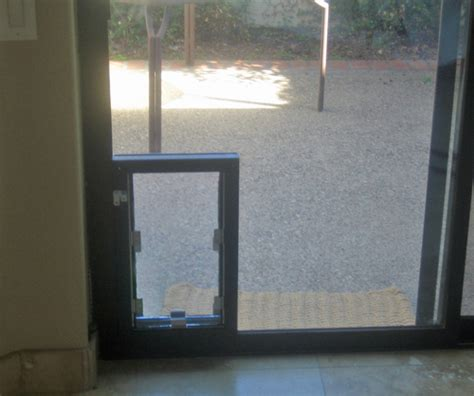 Glass Door Installers Camelback Pet Doors