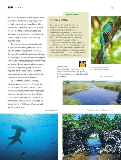 pag 114 de ciencias libro quinto grado naturales 2016 libro de ciencias naturales quinto grado pagina 114 2016