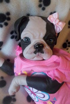 reborn pugs for sale 1000 images about reborns on reborn dolls reborn babies and reborn doll kits