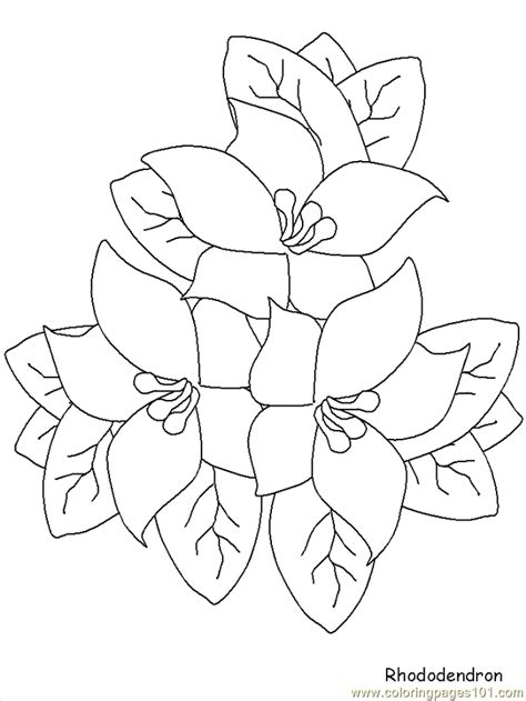 free coloring pages of realistic flowers