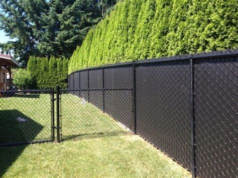 Backyard Makeover Ideas Chain Link Fence Black Fence Ideas