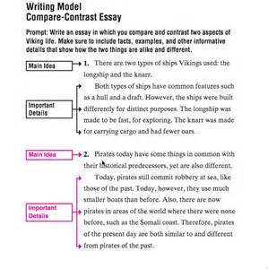 Comparison And Contrast Essay Exle by Ms Pheasant S Website