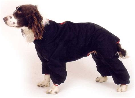 puppy in a suit trouser suit 20inch coat with legs navy