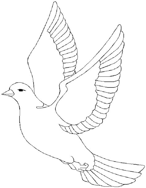 Doves Coloring Pages coloring dove