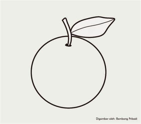 koleksi gambar mewarnai buah jeruk belajar menggambar dan mewarnai