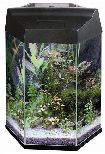 6 hoekig aquarium bol aqua vision aquarium aqua vision aquarium
