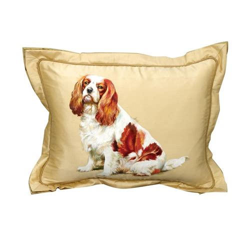 Charles Pillow by 428 Best Images About All Things Cavalier On