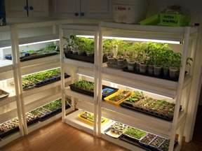 cheap snap together shelves and shop lights make for a reasonable indoor greenhouse and you can