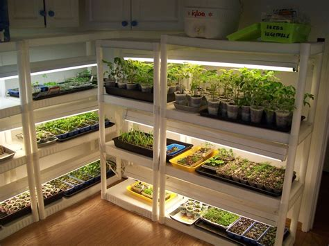indoor greenhouse cheap snap together shelves and shop lights make for a