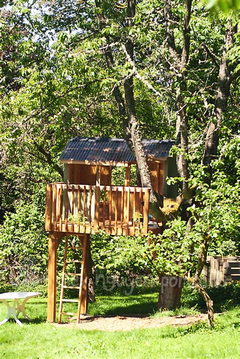 backyard tree houses building a treehouse seattle area lifestyle photographer