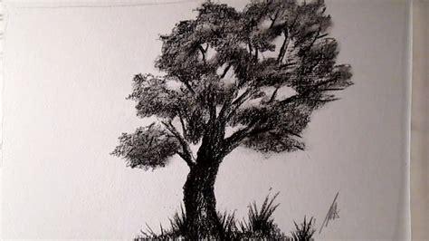 imagenes a lapiz de arboles c 243 mo dibujar un 225 rbol al carboncillo c 243 mo dibujar 225 rboles