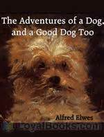 the adventures of mutt and grug books the adventures of a and a by alfred