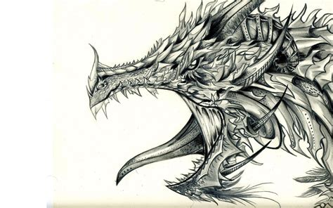 Drawing Dragons by Tribal Wallpapers Wallpaper Cave