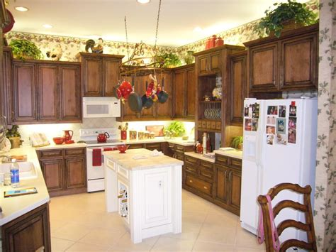 Ideas For Top Of Kitchen Cabinets by Kitchen Best Ideas Reface Kitchen Cabinets White Pain