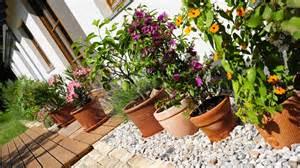 mediterrane terrasse haus garten mediterranes flair f 252 r den garten zdf de